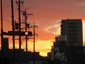 2019124夜明け.JPG