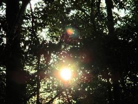 2019410太陽.JPG