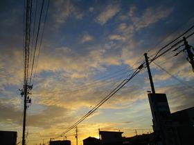 2019813朝焼け.JPG