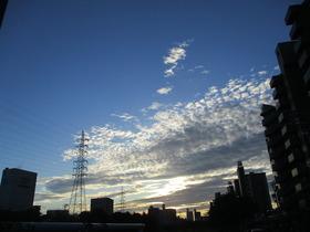 201998夜明け (2).JPG