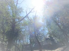 20200323中山神社.JPG