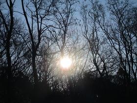 20200326太陽.JPG