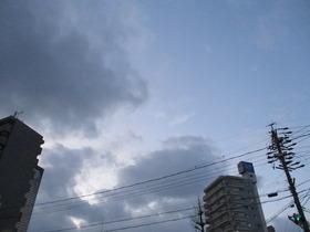 2020314夕方.JPG
