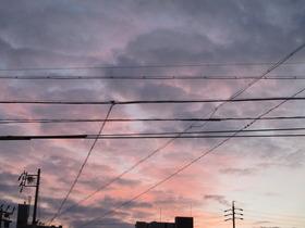 20210210夜明け�@.JPG